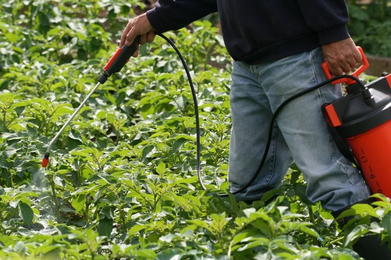 Minisite jardins pesticides attention danger - Lutter contre les moustiques dans le jardin ...